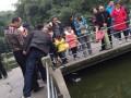 重庆动物园不文明行为曝光 你有吗?